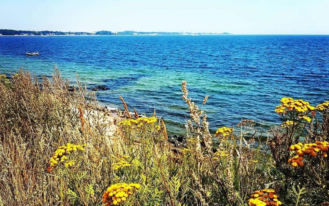 Scharbeutz mit Rollstuhl – Ein Lieblingsort an der Ostsee